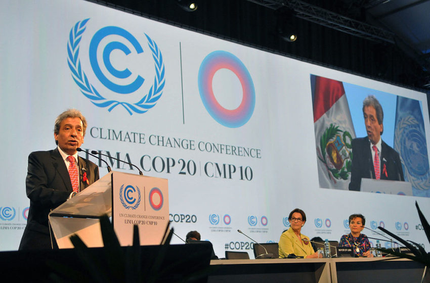 COP20, un'altra occasione persa