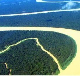 La COP si tinge dei colori dell'Amazzonia
