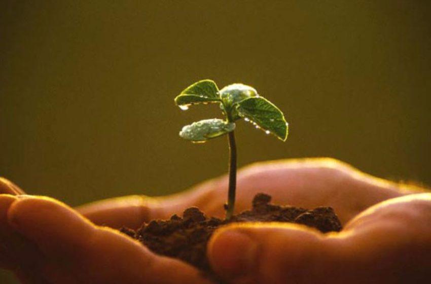 E' possibile un'agricoltura più sostenibile?