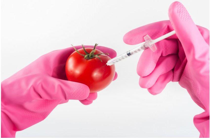 OGM: quanto sappiamo?