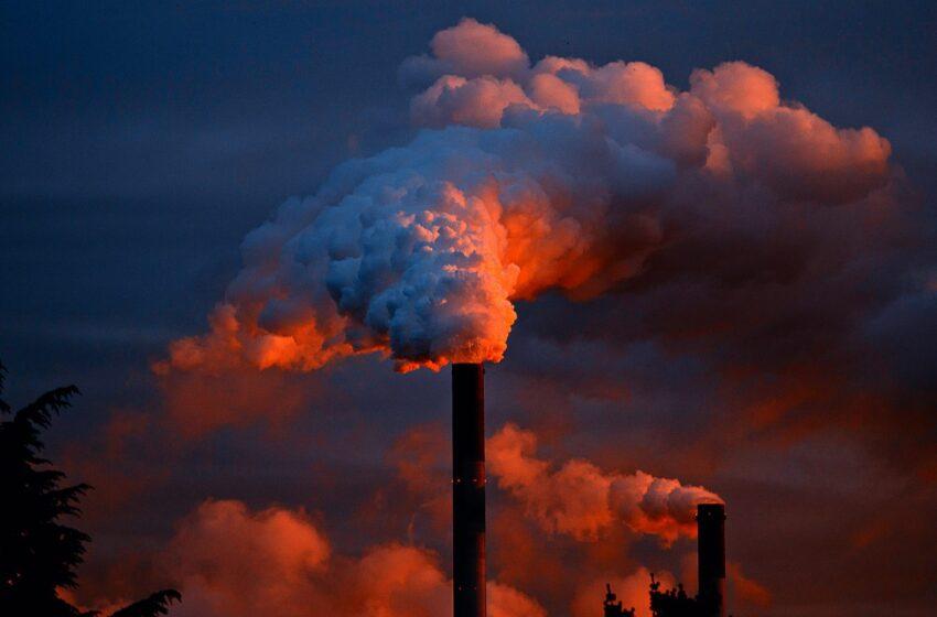 """I Paesi del G-20 investono nei fossili per """"risanare"""" l'economia"""