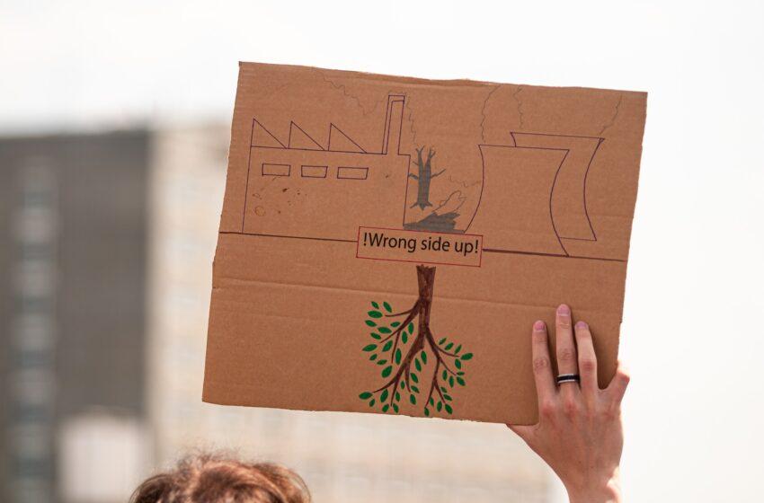 6 giovani portoghesi contro 33 paesi: la prima denuncia climatica alla Corte Europea