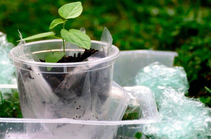 BIOnTOP: ricerca e innovazione per un consumo sostenibile