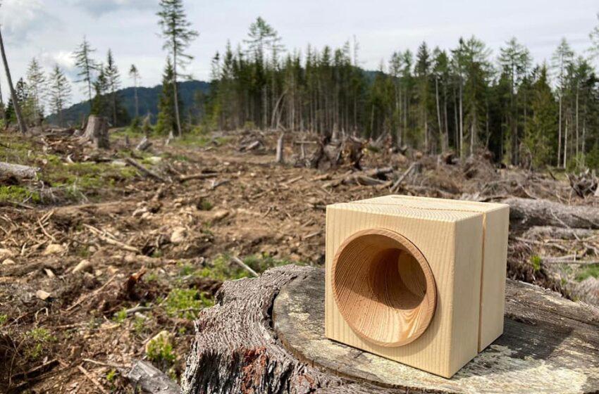 Vaia Wood: sostenibilità al cubo