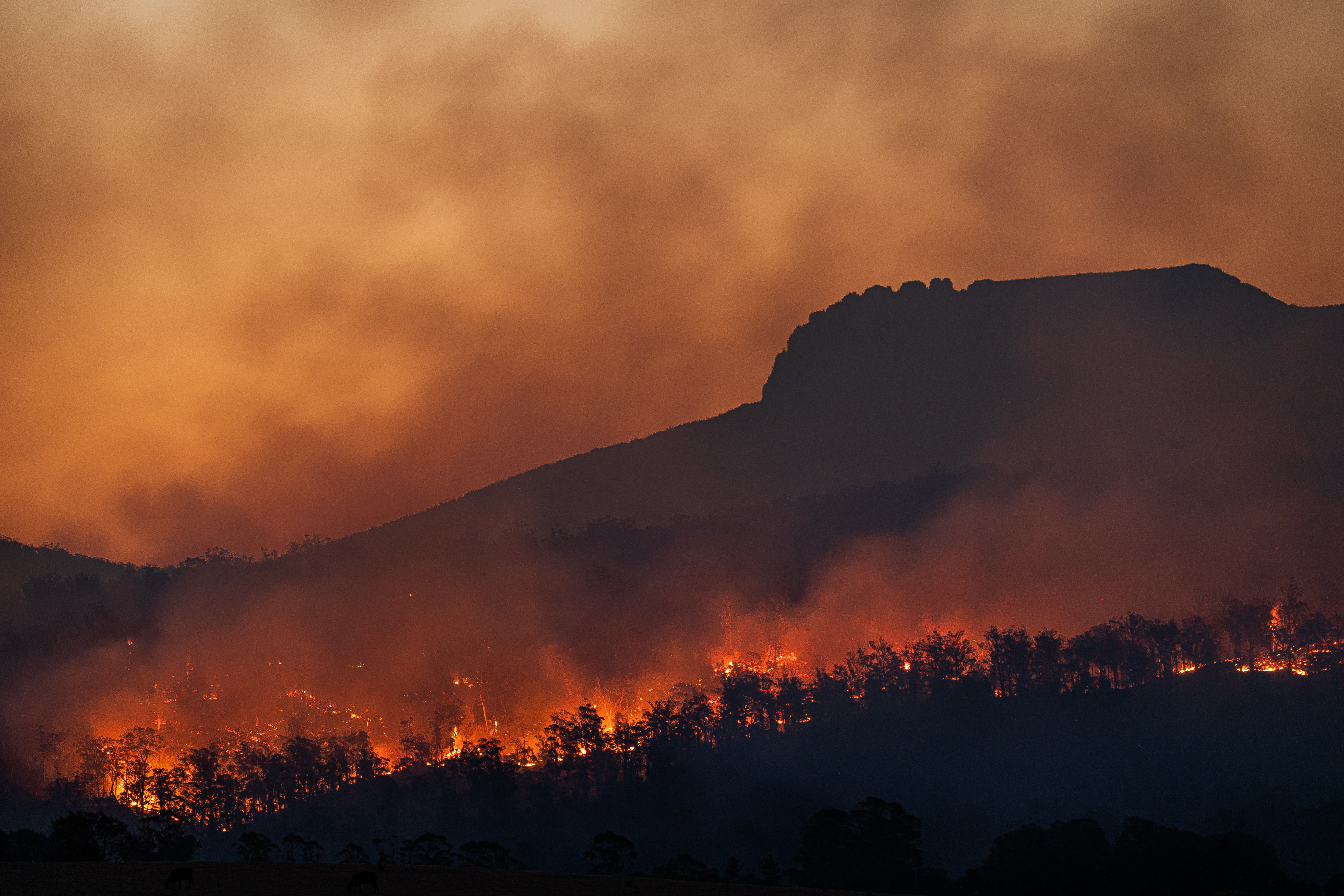 Il nuovo rapporto IPCC lancia l'allarme clima