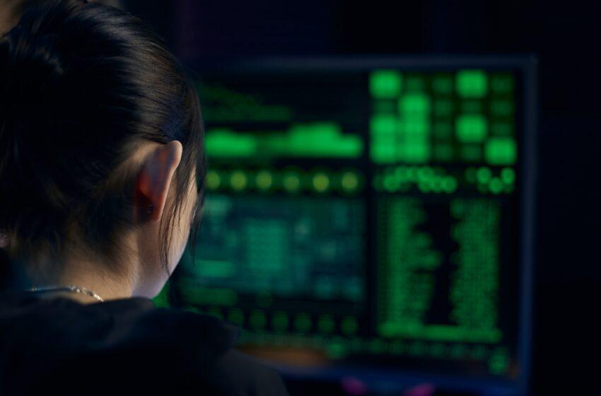 Il fenomeno del furto d'identità su Internet